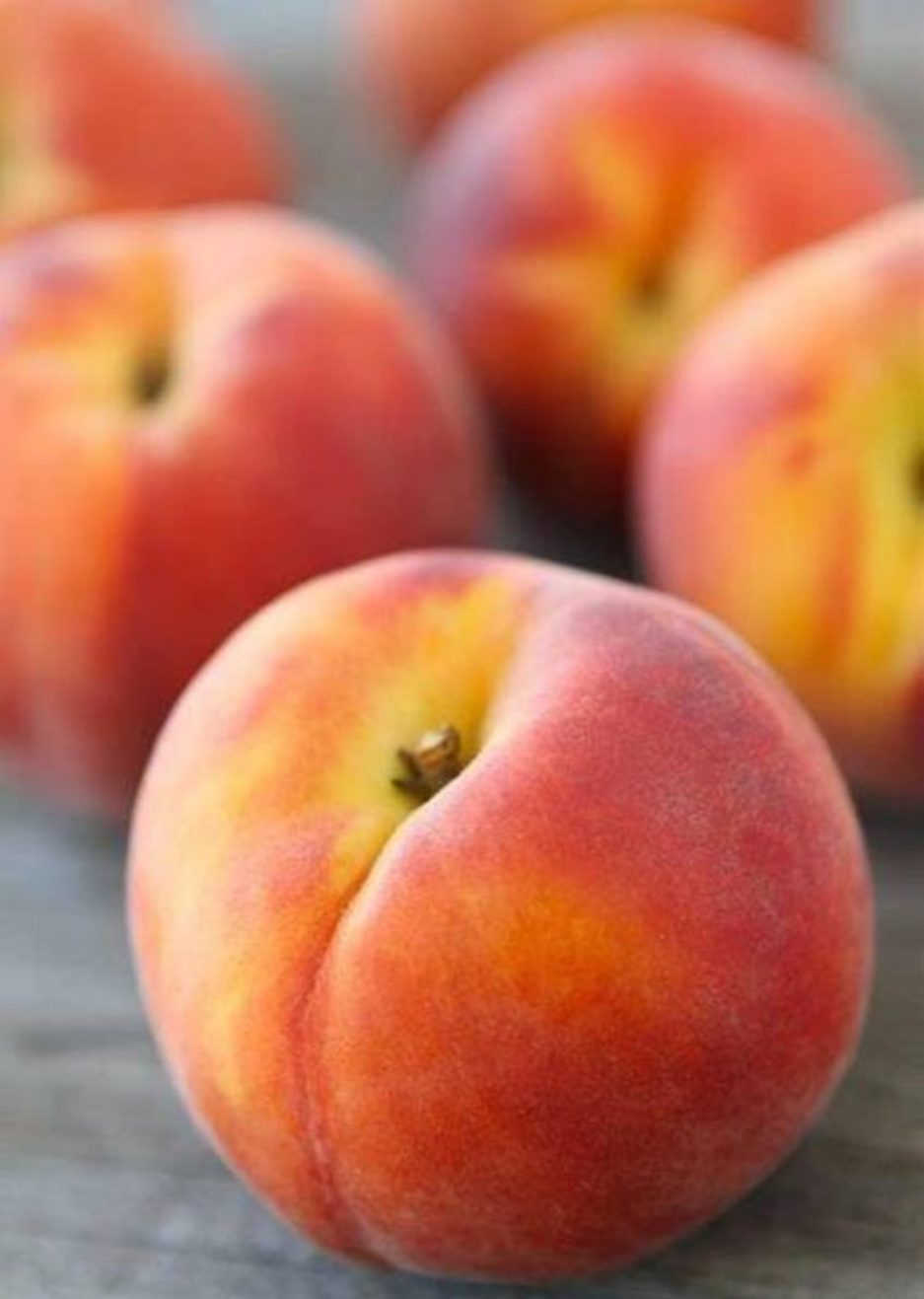 the peach keeper by sarah addison allen pdf